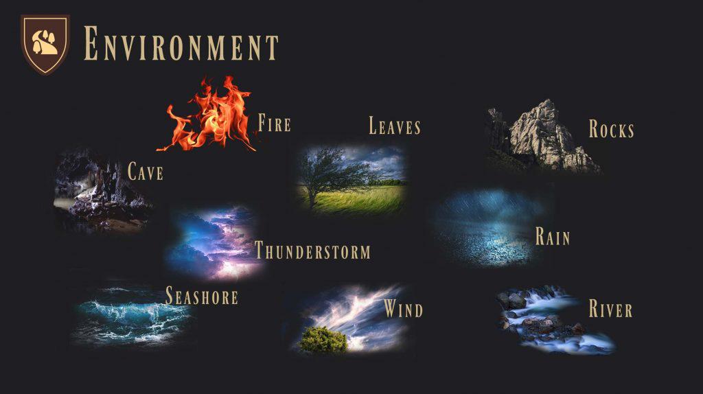 Environment-EN